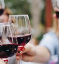 wine quiz and dine